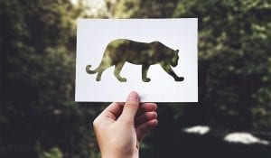 hand raising up a paper cut out tiger with the trees or forest as background